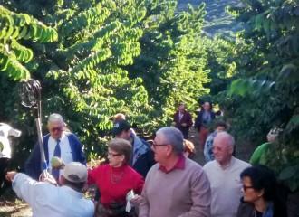 visita guiada Almuñécar frutos tropicales